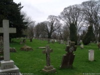 St Andrew's Church, Miserden (5) (96k)